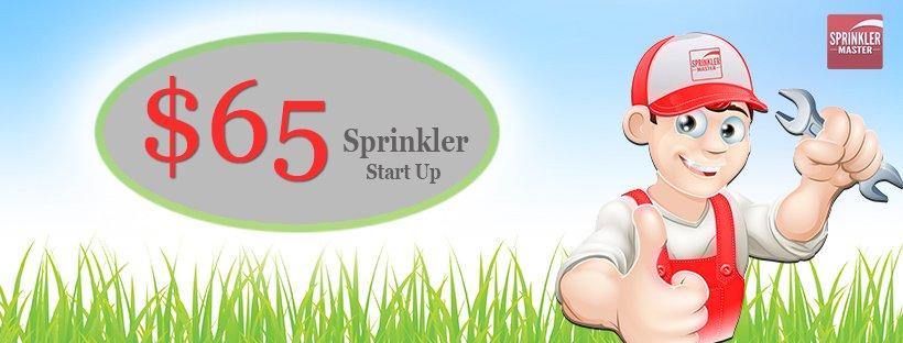 spring start-up